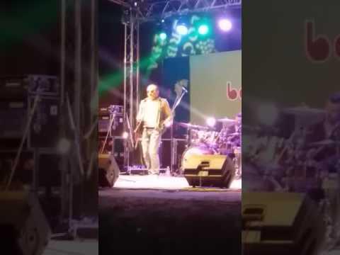 Zeljko Bebek - Laku noc sviraci