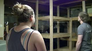 Basement Shelves Construction, Timelapse, Tips And Tricks.