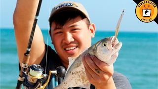 Beginner Beach Fishing Tips Using Plugs and Lures