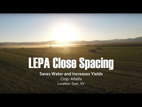 Save Water and Increase Yields with LEPA Close Spacing ‒ Interview with John Mauer