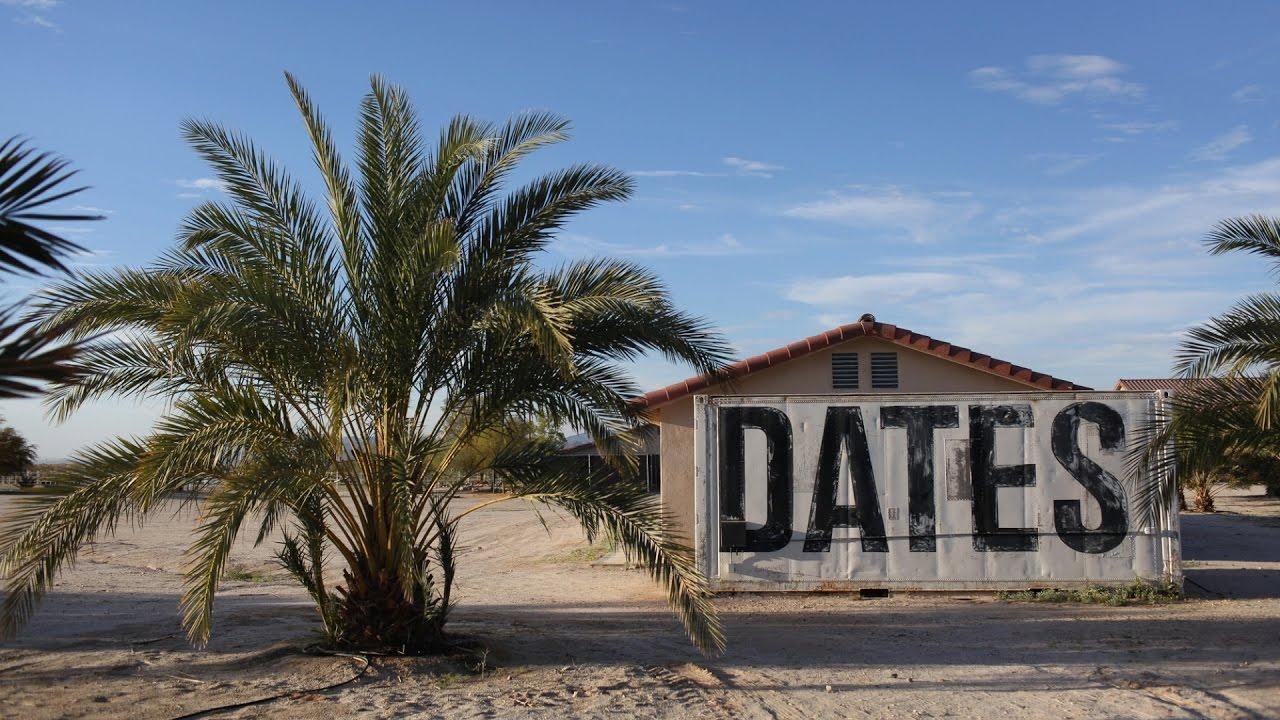 Arizona's Date Farms