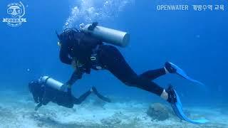 배울때는 제대로 놀때는 안전하게ㅣ openwater자격증따기 [스쿠버다이빙/scubadiving/코브라다이브/오픈워터] JSH COBRADIVE 201707 OW