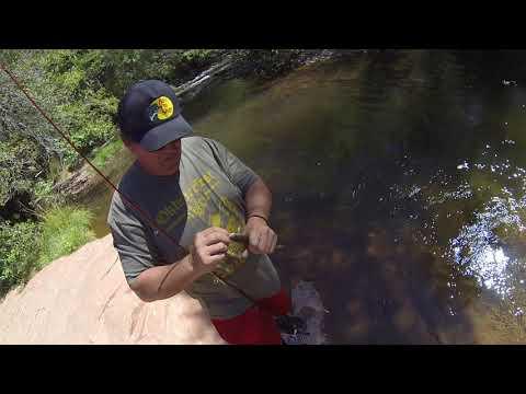 Fishing Oak Creek In Sedona, AZ