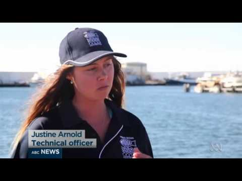 Aquaculture is the fastest growing primary industry in Australia