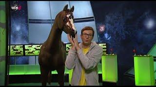 21.10.2014 Quarks undf Kasper - Das Pferd