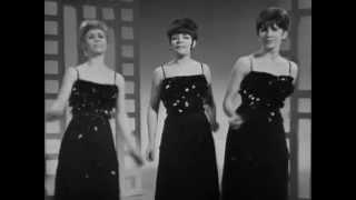 The Vernons Girls: It