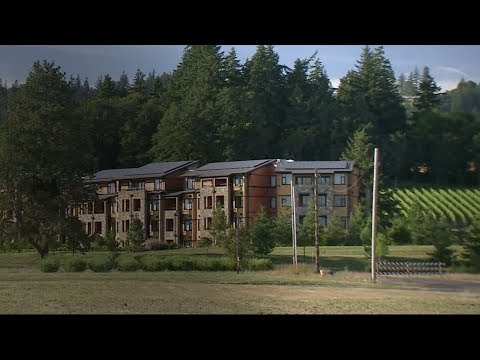 Lexus Rewards partner Allison Inn & Spa in Oregon wine country