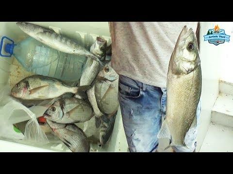 Şeytan Oltası Nasıl Kullanılır? İnanılmaz Balıklar Yakaladık