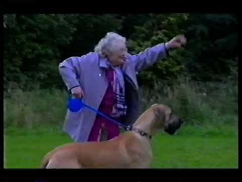 Woman with too-big DOG!!!Kaynak: YouTube · Süre: 16 saniye