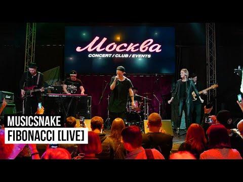 MusicSnake - Fibonacci [feat. Oleg Butman]
