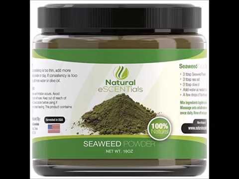 Seaweed Powder – 100% Organic Kelp Powder   Cellulite Treatment   Fresh Norwegian Ascophyllum Nodosu