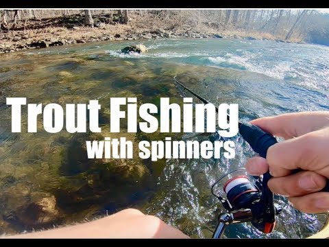 TROUT FISHING For GIANT BROWN TROUT And RAINBOW TROUT With SPINNERS