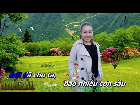 xin-lam-nguoi-xa-la-karaoke-song-ca-voi-luu-anh-loan
