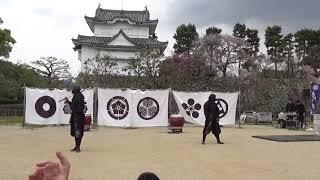 三平さん←忍術披露 凛さん 鳴海さん.