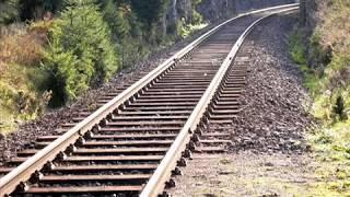BRONTOSAUŘI - Rosa na kolejích ( Rok 1987)