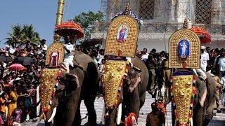 Vượt qua nỗi sợ: Rước kiệu Lễ Đức Mẹ Hồn Xác Lên Trời lớn nhất tại Kerela, Ấn Độ