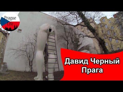Инсталляция Давида Черного
