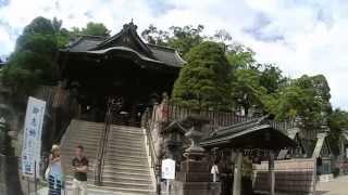 Tokyo Layover Tour (To Narita Airport, Naritasan Shishoji) by Outech