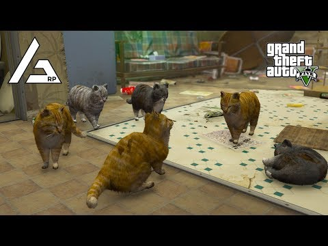 GTA 5 Roleplay - ARP - #205 - Cat Pack Chaos!