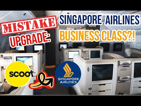 MISTAKE UPGRADE: Scoot Airlines ECONOMY To Singapore Airlines B777-200 BUSINESS CLASS!! | SYD To SIN