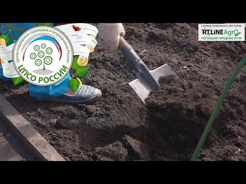 Агробизнес идеи для небольших земельных участков
