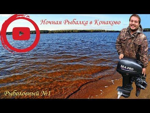 Рыбалка в Конаково! Ловим стерлядь на червя 😃👍🏻 Тверская область.
