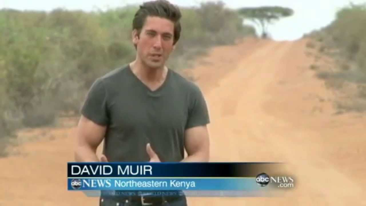 Image result for david muir photos