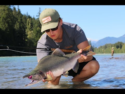 FLY FISHING for PINK SALMON on the Squamish River