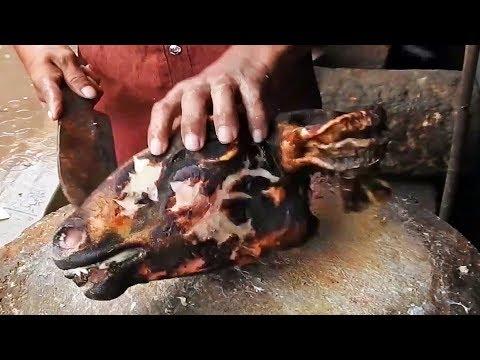 Lamb HEAD GOSHT recipe | Sheep HEAD KORMA recipes | Skilled BUTCHER | Ovis aries brain PAYA curry