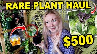 $500 RARE PLANT HAUL!!! HUGE RARE HOUSEPLANT HAUL   21 RARE HOUSEPLANTS 2021