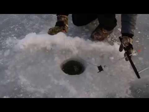 Ice Fishing Grayslake Illinois