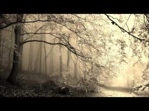 Federico Monachesi: Steaming Forests (Nicolas Rada Remix) Mp3