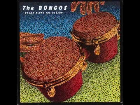 The Bongos - The Bulrushes - 1981