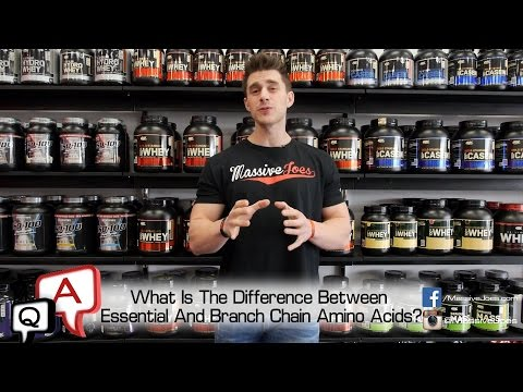 What Is The Difference Between BCAAs and EAAs? MassiveJoes.com MJ Q&A Essential Amino Acids