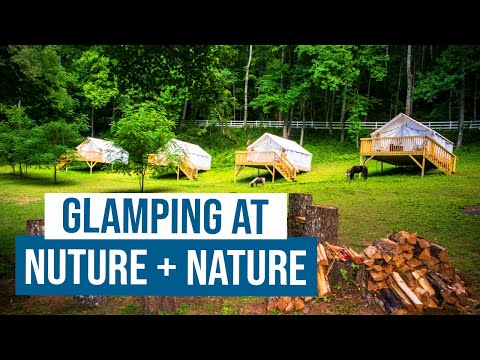 Come Glamping with us at Nuture + Nature Retreat in Franklin NC