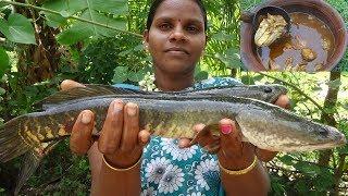 Viral Fish Kulambu Recipes / Murrel Fish Curry / River Fresh Viral Meen Kulambu