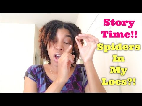Story Time: OMG!!! There Were Spiders In My Locs!!!!!