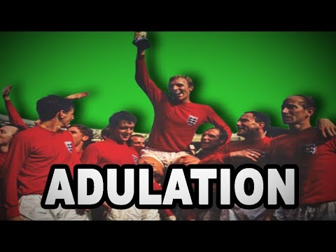 Learn English Words: ADULATION - Meaning, Increase Your Vocabulary with Pictures and Examples