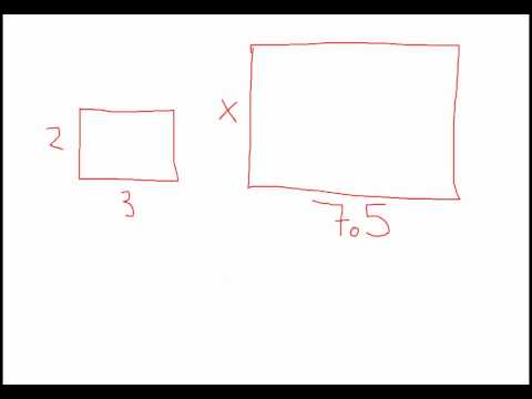 Flag Proportions Or Rectangular Proportions
