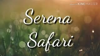 #serena #safari #song                           Serena Safari video song lyrics