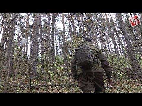 Тайное место. В Ульяновской области обнаружили чурбаки, которым 50 миллионов лет