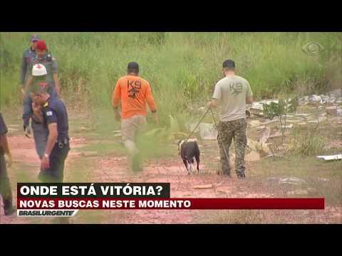 Cão Farejador Busca Por Menina Desaparecida Em SP