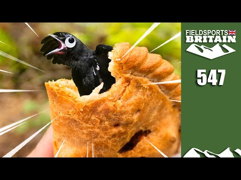 Fieldsports Britain - Four-and-twenty Blackbirds
