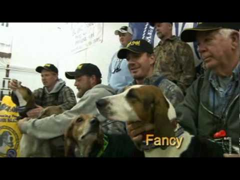 AKC World Coonhound Championship Hunt 2006