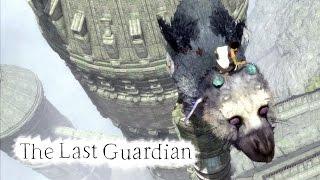 the last guardian 8 ajudando trico ps4 pro gameplay portugus