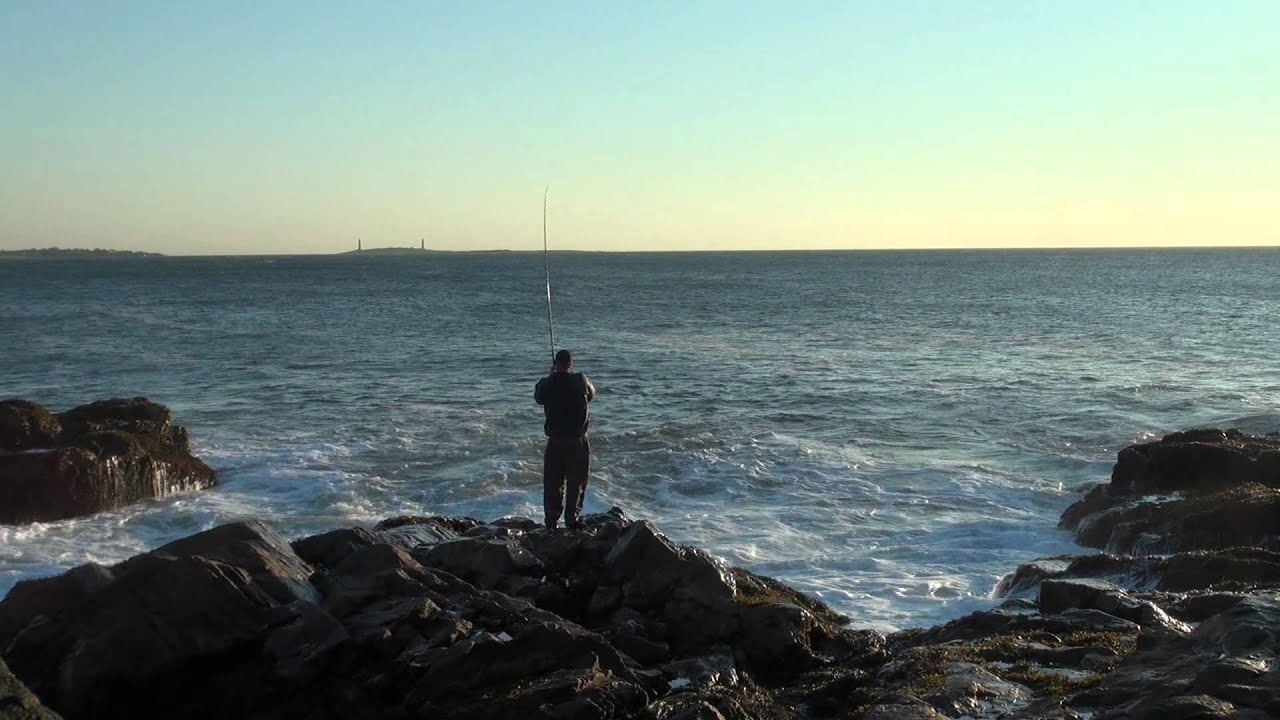 Gloucester ma 10 15 11 rare blue fish fishing in the not for Gloucester ma fishing