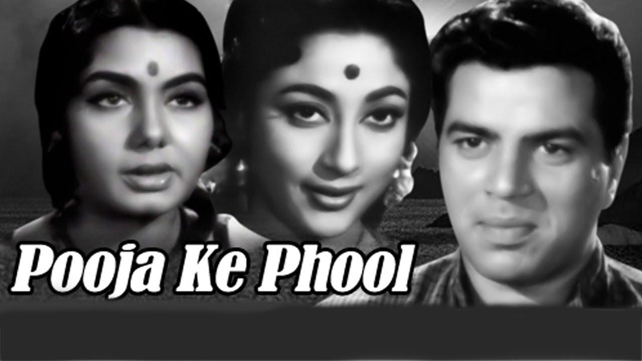 Download Pooja Ke Phool Full Movie   Mala Sinha Old Hindi Movie   Dharmendra   Old Classic Hindi Movie