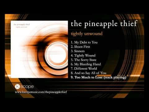 The Pineapple Thief - Too Much to Lose (from Tightly Unwound)