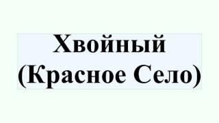 Хвойный (Красное Село)(Хвойный (Красное Село) Хво́йный — населённый пункт, расположенный к северо-западу от автомобильной дороги..., 2016-07-10T07:18:05.000Z)