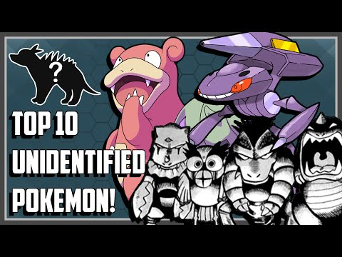 Top 10 Unidentified Pokemon You Probably Didn't Know About!